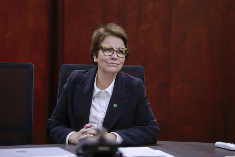 Ministra da Agricultura, Tereza Cristina testa positivo para a Covid-19